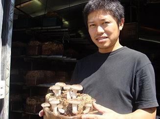 椎茸生産(収穫・箱詰め)