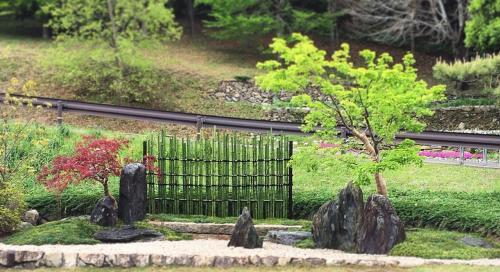 毎年、植物園で庭園展示を行っています。